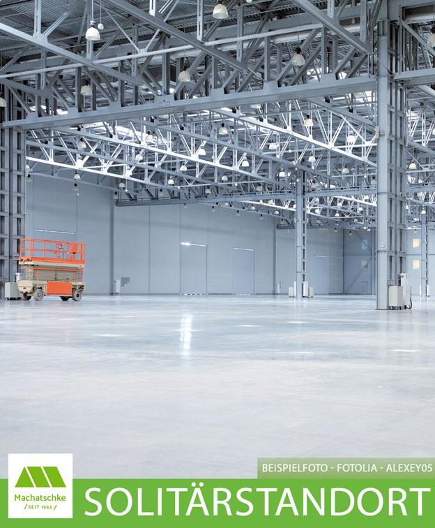 Produktion - Lager - Logistik - Vielfältig nutzbar - Solitärstandort - Tageslicht