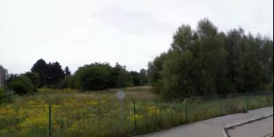 Vermittlung eines 11.000 m² großen Gewerbegrundstücks