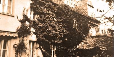 3-Familienhaus in Nürnberg-Mögeldorf verkauft